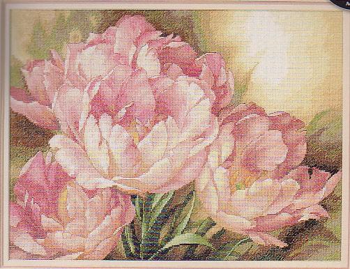 Тюльпаны крестиком