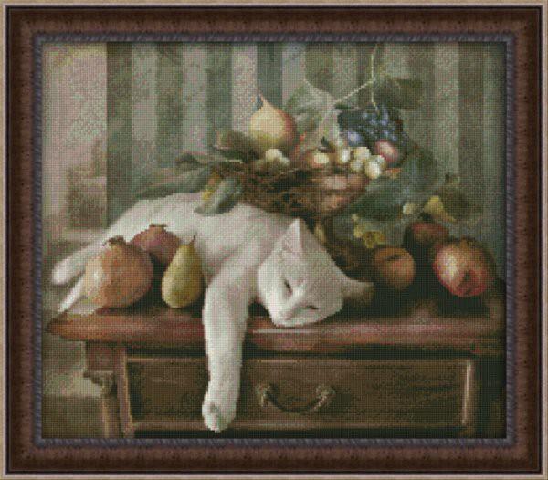 Спящий кот с фруктами